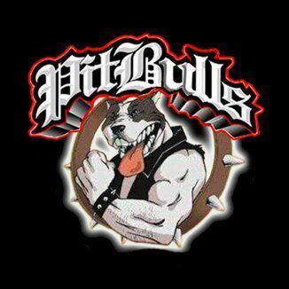 Pitbulls Academy