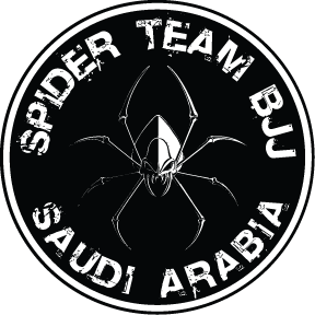 Spider Team