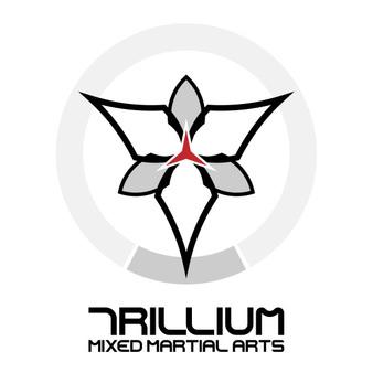 AST MMA