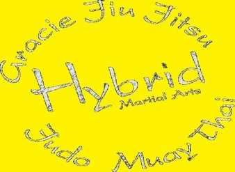 Hybrid Academy of Martial Arts
