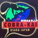 Cobra Kai MMA Dojo