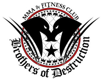 Brothers Of Destruction MMA