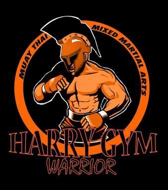 Harry Gym Warrior