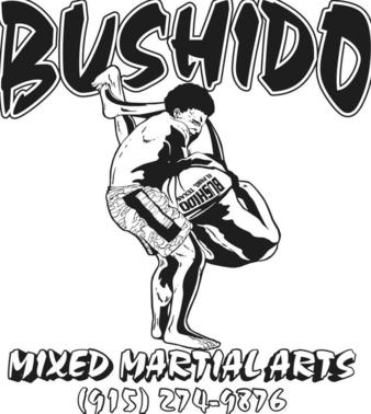 Bushido MMA Texas