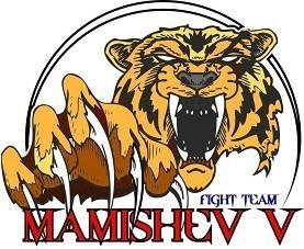Mamishev Team