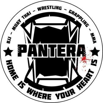 Pantera Fighter