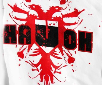 Havok Martial Arts