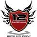 12 Gauge MMA