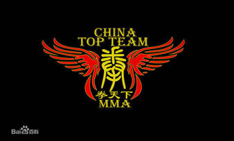 China Top Team