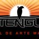 Centrul de Arte Martiale Tengu