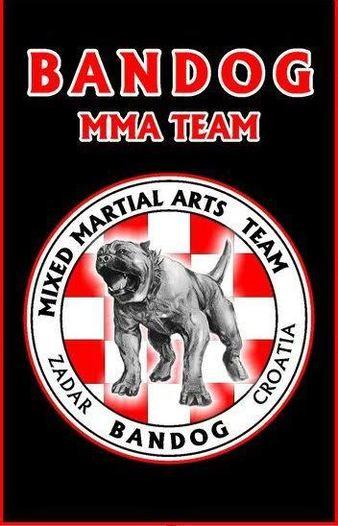 Bandog MMA Team