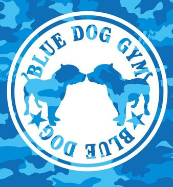 Blue Dog Gym