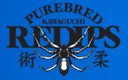 Reversal Gym Kawaguchi REDIPS