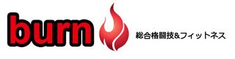 Burn MMA
