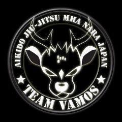 Team VAMOS