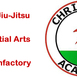 Chris Rees Academy