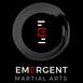 Emergent Martial Arts