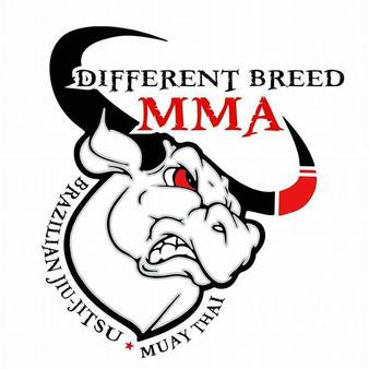 Different Breed MMA