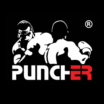 Puncher Wrocław