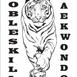 Cobleskill Taekwondo & Martial Arts