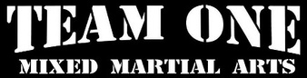 Team One MMA