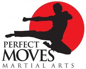 Perfect Moves Martial Arts