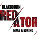 Blackburn Predators MMA