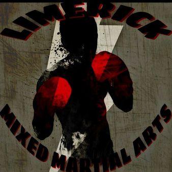 Limerick Mixed Martial Arts & Fitness