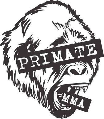 Primate MMA