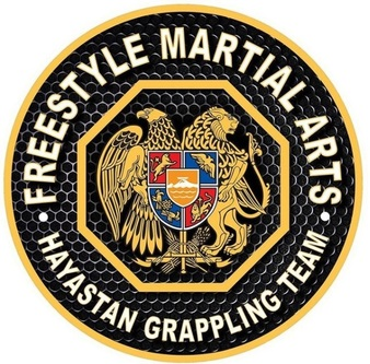 Freestyle Martial Arts/ Hayastan MMA Las Vegas