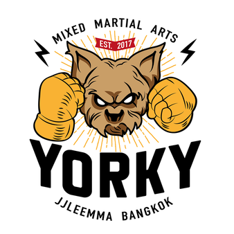 YORKY Mixed Martial Arts