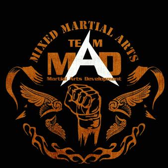 Martial Arts Development