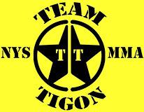 Tigon Academy