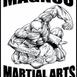 Magnus Martial Arts Erina
