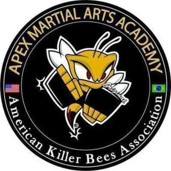 Apex Martial Arts Academy
