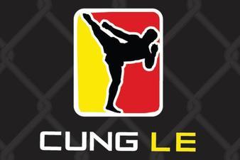 Cung Le's MMA