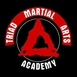 Triad Martial Arts