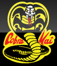 Joe Stevenson's Cobra Kai
