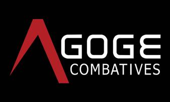 Agoge Combatives