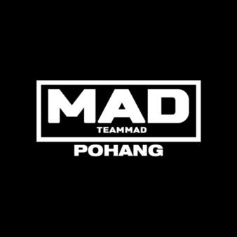 Pohang Team MAD