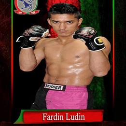 Fardin Ludin