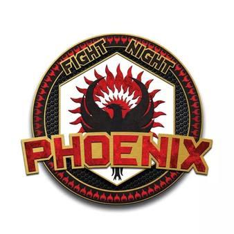 Phoenix MMA UK