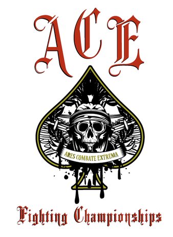 Ace Fighting Championship