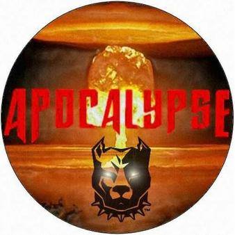 Apocalypse Pitbull Fight Championship