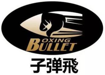 Bullet Fly FC