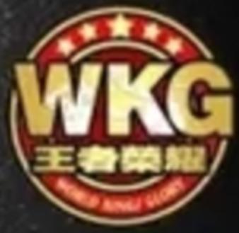 WKG MMA