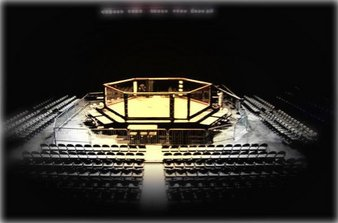 Golden Cage MMA
