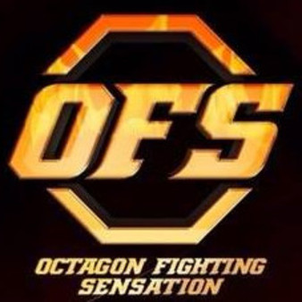 Octagon Fighting Sensation