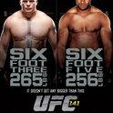 UFC 141