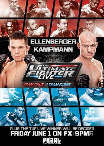 The Ultimate Fighter 15 Finale